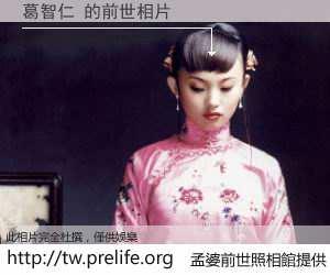 葛智仁 的前世相片