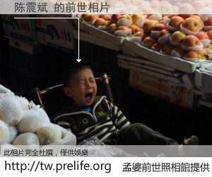 陈震斌 的前世相片