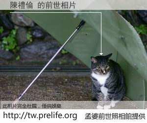 陳禮倫 的前世相片