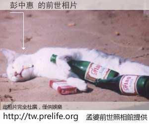 彭中惠 的前世相片