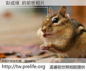 彭成璋 的前世相片