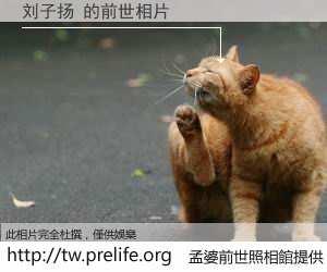刘子扬 的前世相片