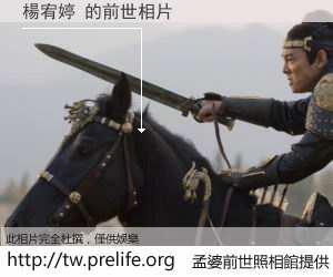 楊宥婷 的前世相片
