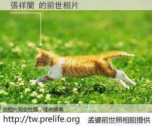 張祥蘭 的前世相片