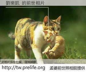 劉樂凱 的前世相片