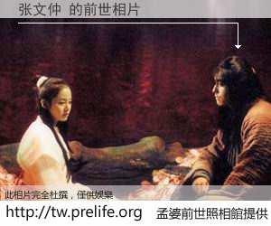 张文仲 的前世相片