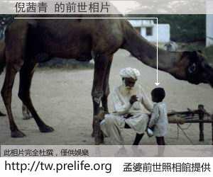 倪茜青 的前世相片