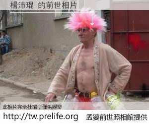 楊沛琨 的前世相片