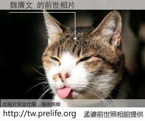 魏廣文 的前世相片